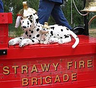 Fire house dalmations
